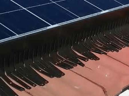 protection-photovoltaique-anti-pigeon-sogepi-servibois